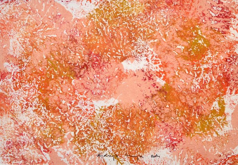 andreja kranjec tropska globina 11