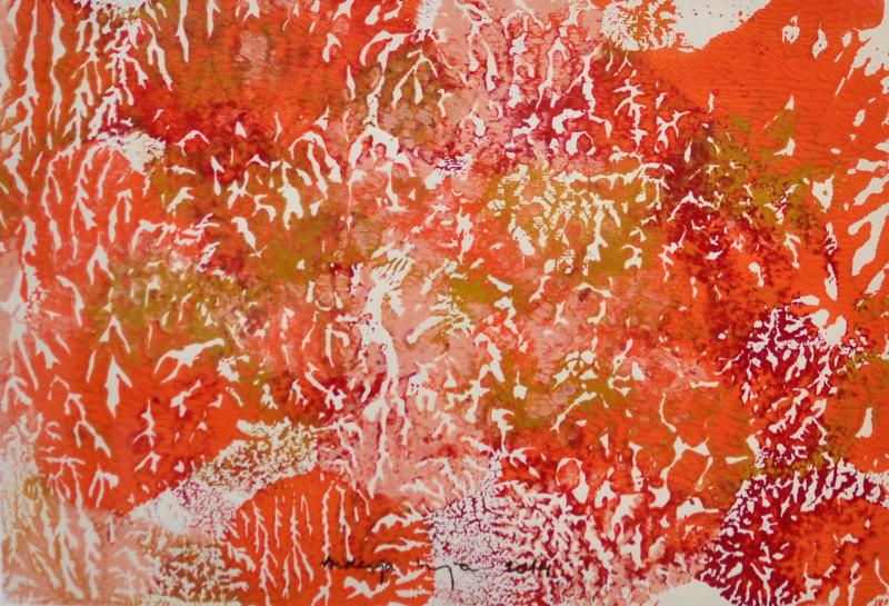 andreja kranjec tropska globina 12