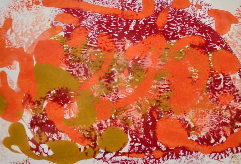 andreja kranjec tropska globina 14