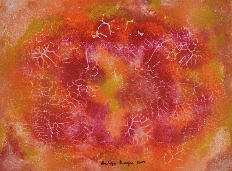 andreja kranjec tropska globina